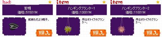 2009y05m19d_110119046.jpg